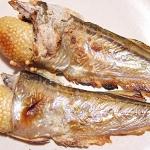 ハタハタの焼き魚
